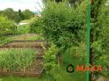 Záhradka, Bojnice